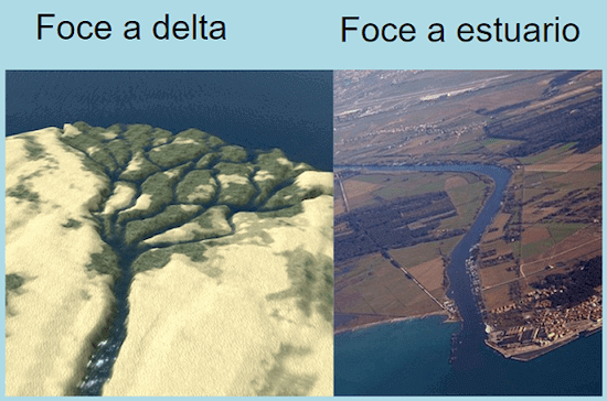 Differenza tra foce a delta ed estuario