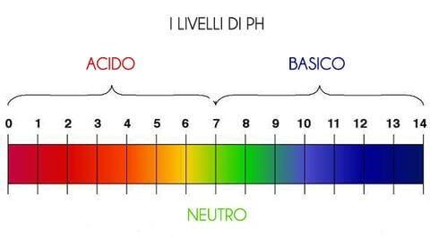 pH caffè