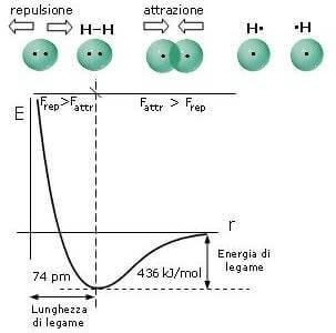 [Immagine: energia-legame-idrogeno.jpg]