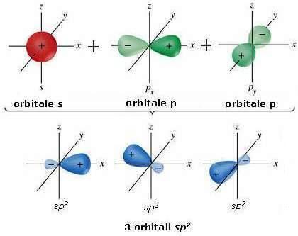 Orbitali S e P del carbonio.